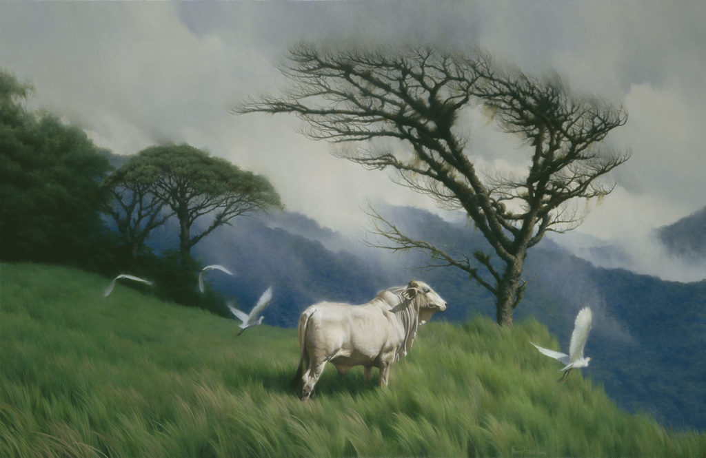 Into The Wind • 2006 • 26 x 40 • Oil on linen • Costa Rica • Available Tilting at Windmills Gallery