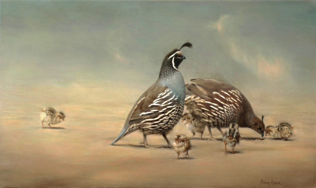 Just Beginning • 2018 • 18  x 24 • Oil on  linen • California Quail